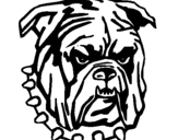Dibuix de Bulldog per pintar