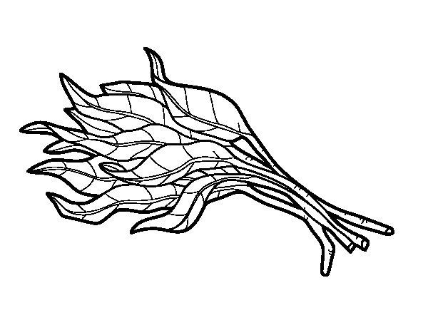 Dibuix de Manat d'espinacs per Pintar on-line